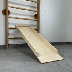 Slide / Climbing board 120-1